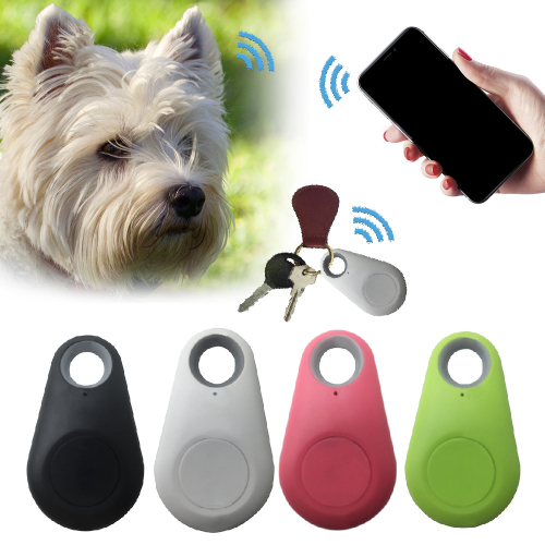 Pet GPS Tracker In Rourkela